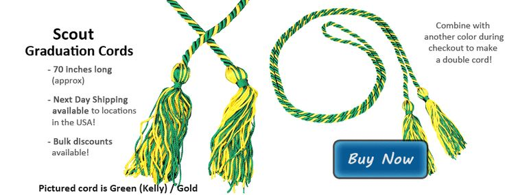 Girl Scout Graduation Cords Picture