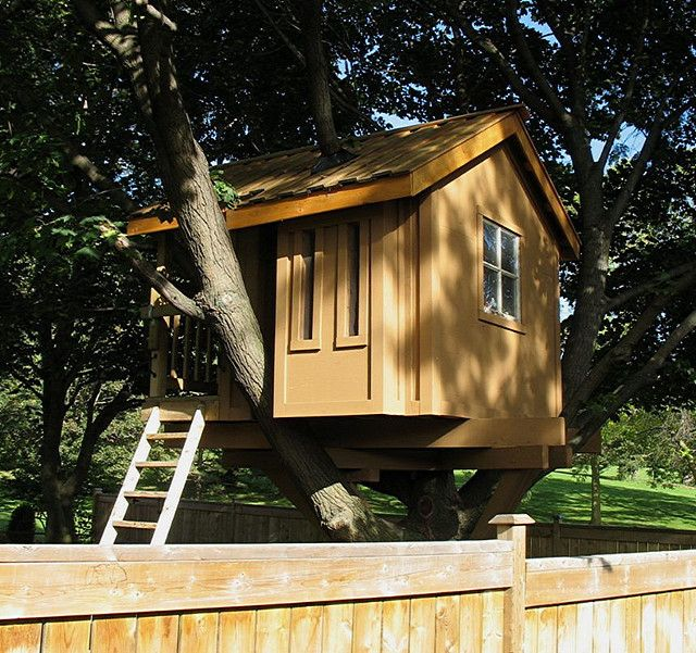 22 Best Tree Houses Images On Pinterest Treehouses Architecture