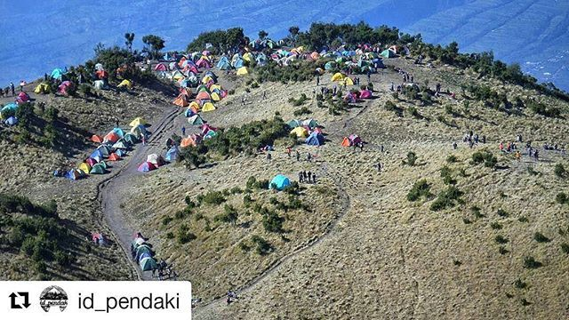 """Merbabu Mountain, Magelang, Central of Java, Indonesia  #merbabu #magelang #centralofjava #indonesia #mountaineering #camping #travel #travels #travelgram #travelphotography #travelblog #travelblogger #traveller #visitindonesia #wonderfulindonesia #beautifulindonesia #visitmerbabu #indonesiamountain #wonderfulplaces #wonderful #wonderfuldestination #tourism #tourist #traveltourist #amazingplaces  #Repost @id_pendaki (@get_repost) ・・・ #repost from @wicaksonoagus_ Gunung itu seperti kasih…"