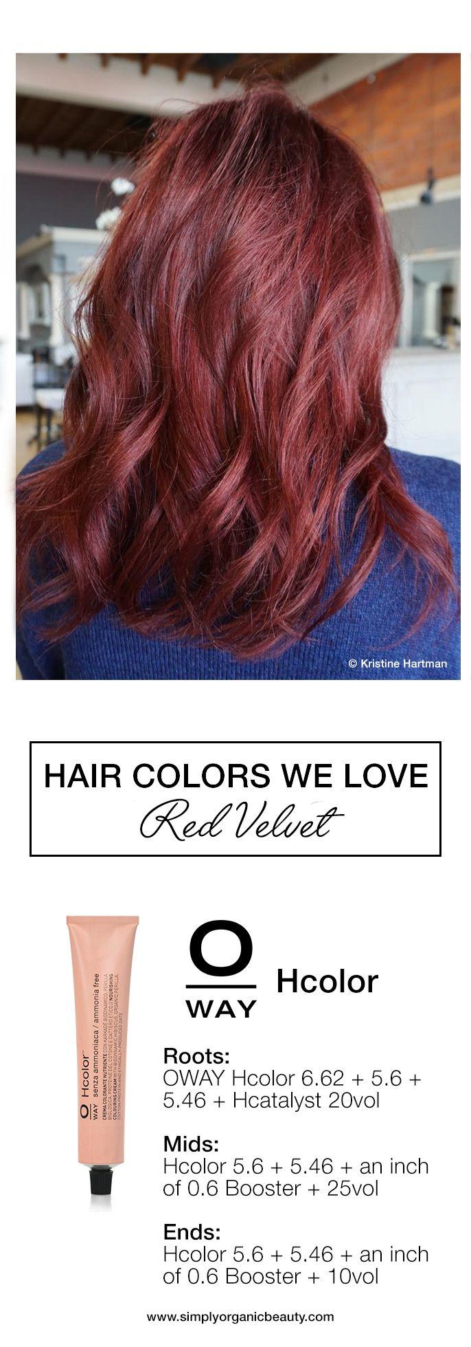 Best 25+ Hair color formulas ideas on Pinterest | Red ...