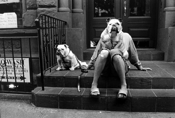 Elliott Erwitt - New York, 2000