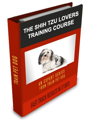 Shih tzus, Shih tzu and Training tips on Pinterest