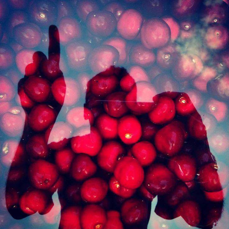 Egy szegett mundérú szelet Európa a #Látszótér Rádióban 20.00 #EgySzeletEurópa - Plakátkampány, kötelezettségszegés és hírek az Európai Bizottság háza tájáról.  Web latszoter.hu/radioplayer/radio.html Player stream.latszoter.hu/radio.m3u Mobil tun.in/seVtq Chat latszoter.hu/chat Fotó © Szentgyörgyi János