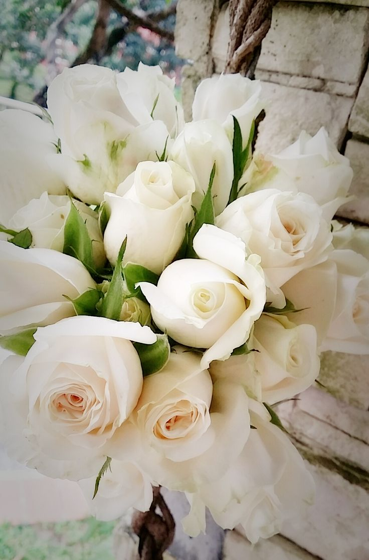 Heavenly White Roses Hand-tied by linda_blissparty