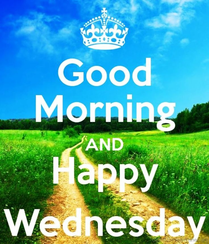 Good morning and happy wednesday