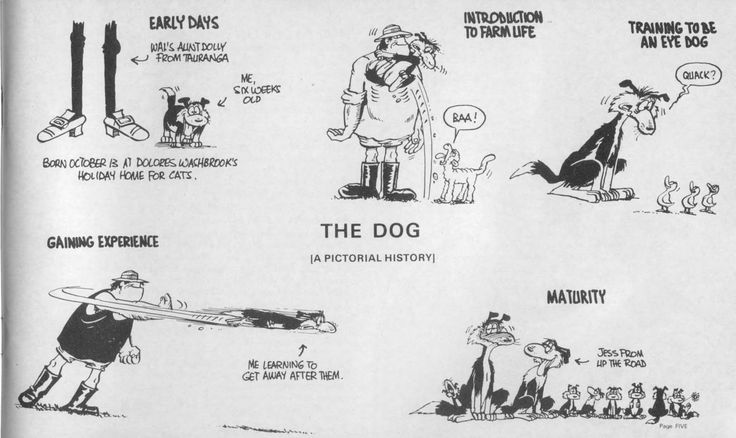 Anybody who grew up in NZ in the 70's and 80's Loves Footrot Flats
