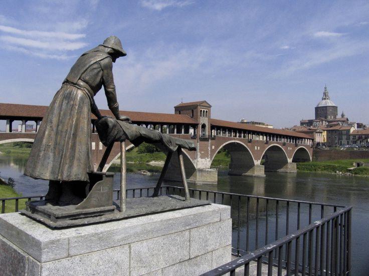 La lavanderina - Pavia