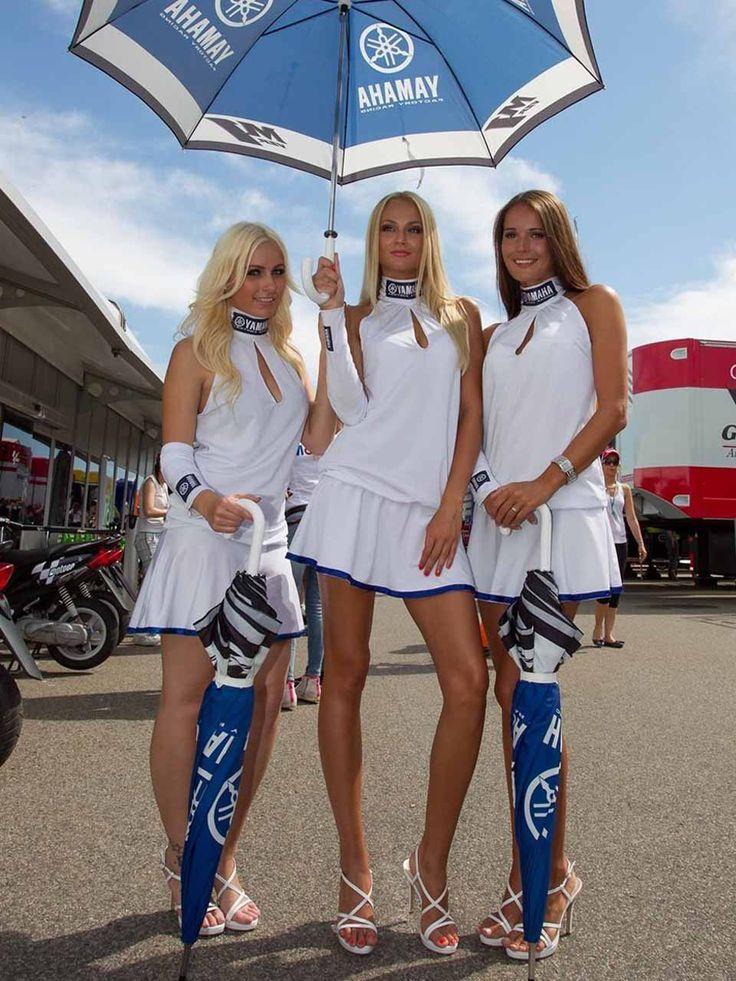 Race Car Dollies