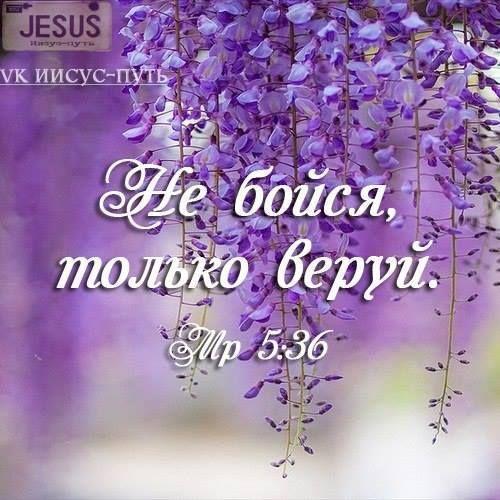 Открытки из библии успокающивая с цитатами
