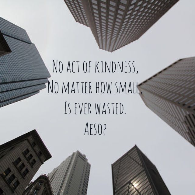 No act of kindness, no matter how small, is ever wasted. #Aesop #quote