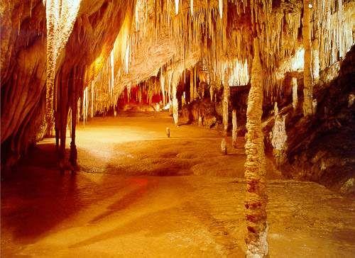 Tasmania  Hastings Caves
