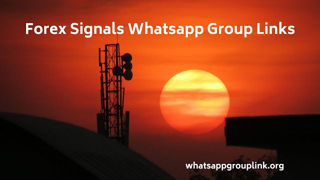 Forex Signals Whatsapp Group Links Forex S Forex Trading