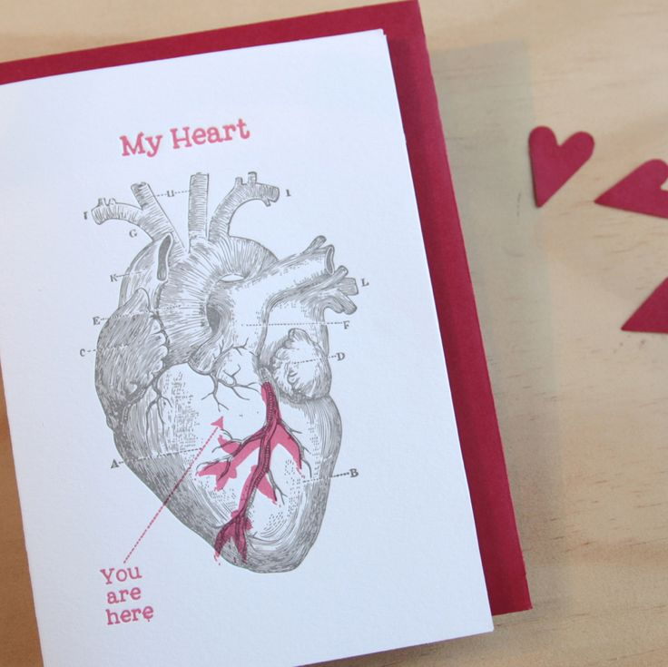 """Fluid Ink Fine Letterpress of Australia - Anatomical heart –  A black anatomical illustration from a vintage medical book with blood red ink highlights and the text """"My heart, you are here""""  A6 card with Kraft envelope  $6.95"""