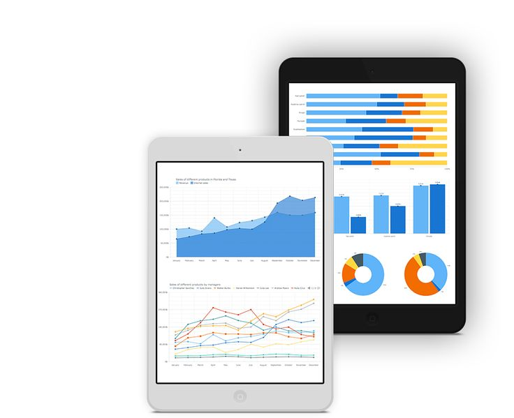 Interactive cross-platform JavaScript HTML5 Charts, Maps, Stocks and Gantts for your project | AnyChart
