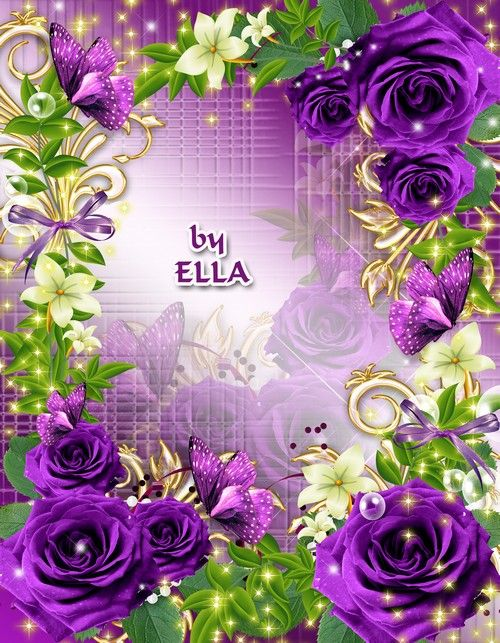 Purple Rose Frame 17 Best images about P...