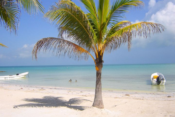 Holbox Isla QR