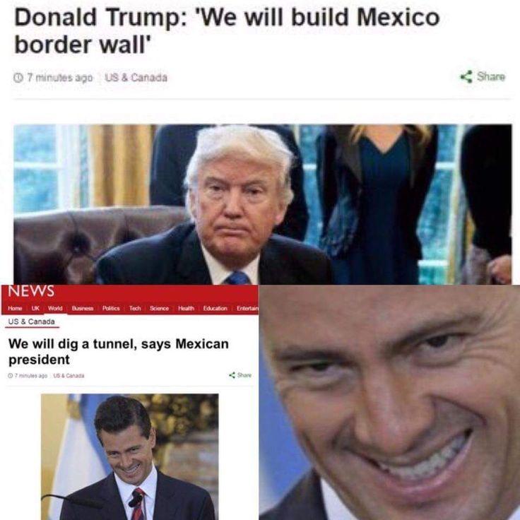 Gotta make the wall mole proof