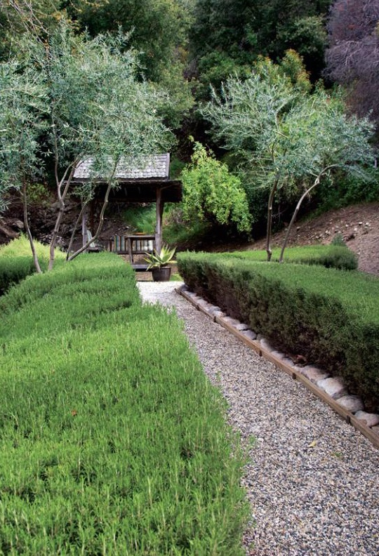 Rosemary hedges and olive trees lead to a teahouse // Great Gardens & Ideas //