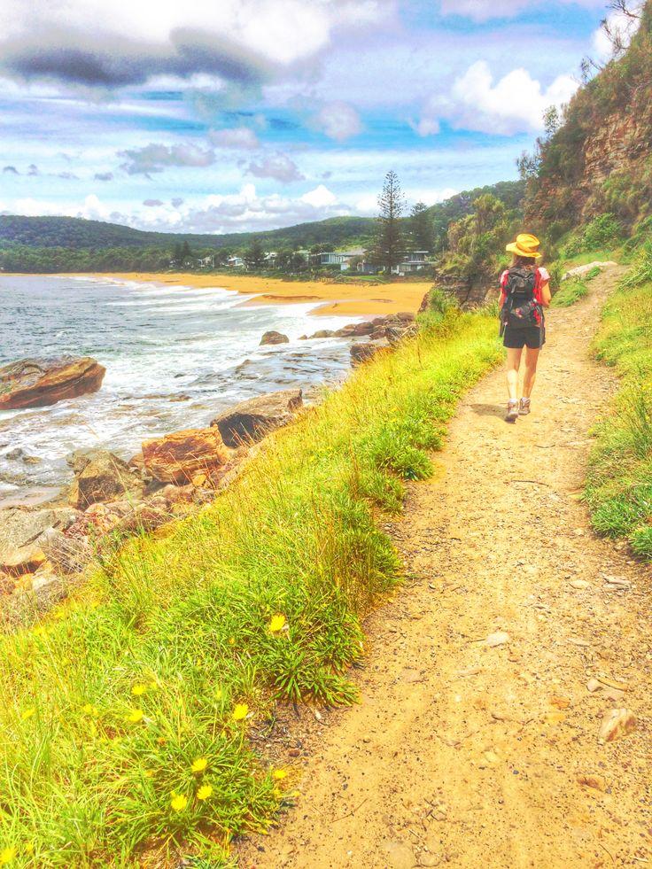 Umina Beach NSW Australia, to Pearl Beach cliff edge walk