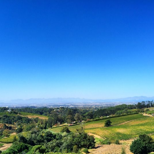 View from Beau Constantia wine farm, Constantia, Cape Town, South Africa
