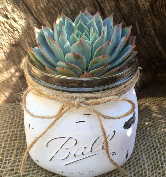 Articoli simili a White Vintage Mason Jar w/ Succulent Kit // Shabby Chic // Rustic // Handpainted & Distressed // Premium Succulents by Succulent Charm su Etsy