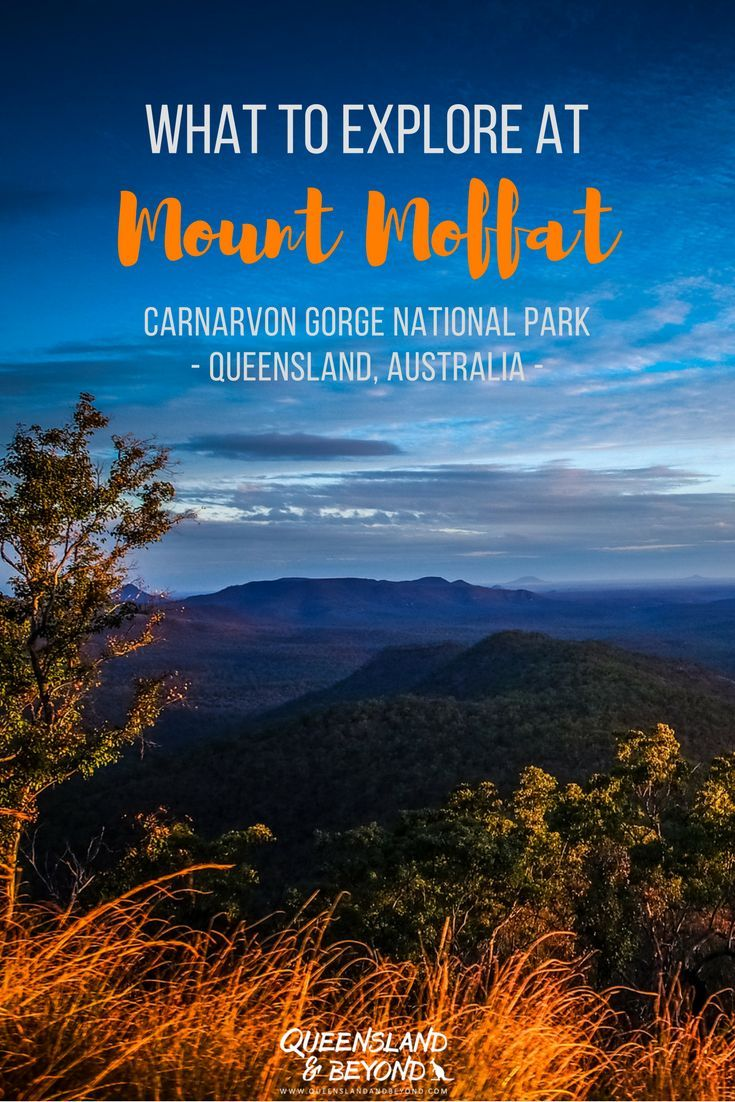 Queensland has so much more to offer than just the beach. Mount Moffat is part of stunning Carnarvon Gorge National Park in the Queensland Outback and so worth a trip. Find ideas and inspiration for a 4WD road trip, camping and walks here! This is 'remote Australia'.    Queensland & Beyond.