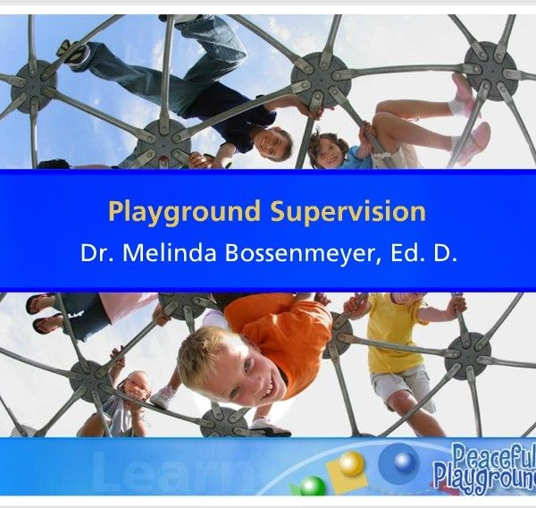 Playground Supervisor Training