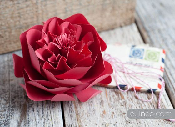 DIY paper peony For My handmade greeting cards visit me at My Personal blog: http://stampingwithbibiana.blogspot.com/