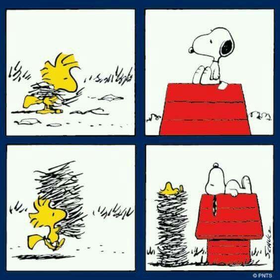 Woodstock twig bed