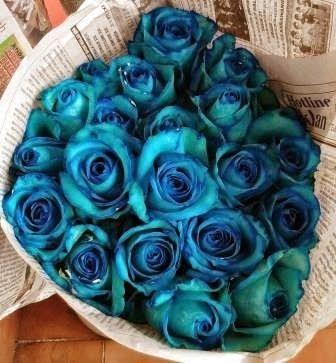 TOKO BUNGA JAKARTA: Arti warna biru pada Bunga