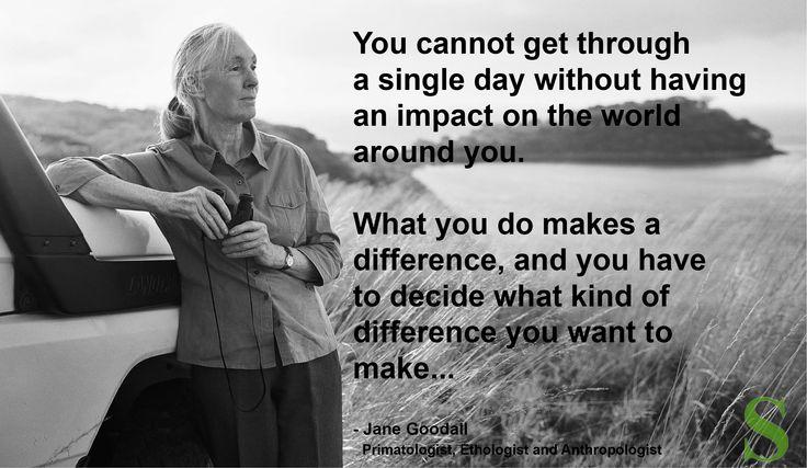 Jane Goodall sustainabledesignandarchitecture.com