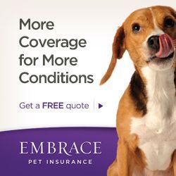 Embrace Pet Insurance (Affiliate)