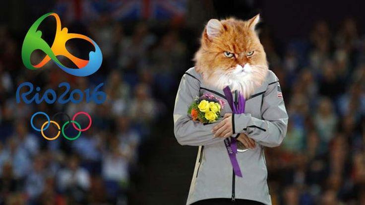 Brezilya'ın Rio kentinde düzenlenen 2016 Yaz Olimpiyat oyunları tüm heyecanı ile devam ederken, kedilerin bu oyunlara dahil olması kaçınılmazdı. Ortaya bir oyun varsa eğer kedileri mutlaka orada olmalı :) Detaylar ve galeri ajanimo.com'da.. #ajanimo #ajanbrian #cat #kedi