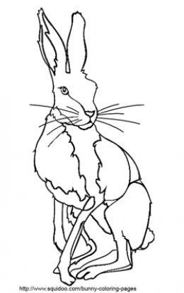 The 25+ best Bunny coloring pages ideas on Pinterest