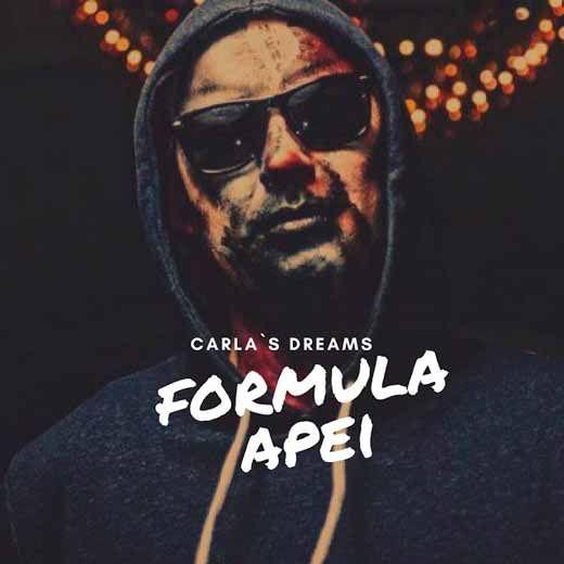 Versuri, Lyrics, Текст песни Carla's Dreams - Formula Apei