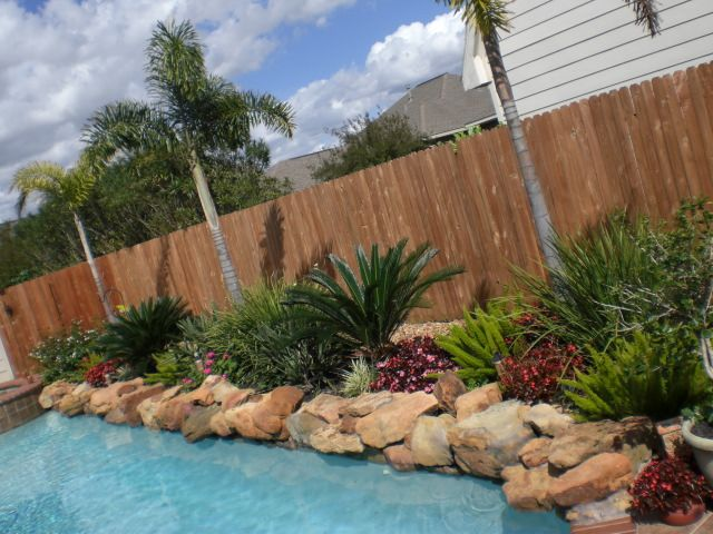 25 best ideas about landscaping around pool on pinterest for Pool landscaping ideas