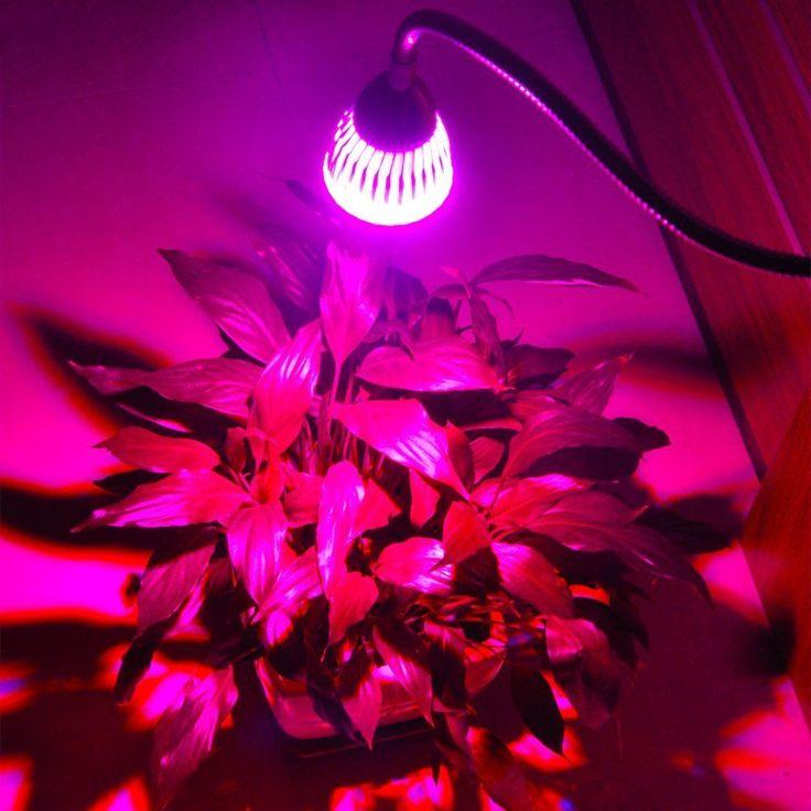 Die besten 25+ LED Grow Lampe Ideen auf Pinterest   Pflanzenlampen ...