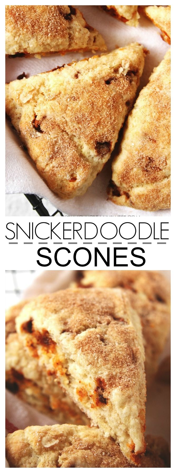 Snickerdoodle Scones - tender scones with cinnamon chips and cinnamon sugar topping!