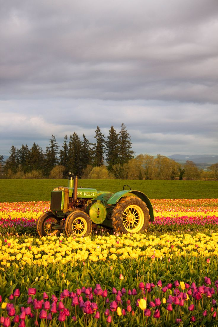 D C Ffa E D B Country Farm Country Life