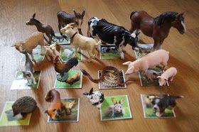 Glücksflügel: Ideen für ein vielfältiges Spielen mit Schleich-Tieren