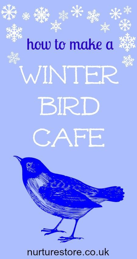 How to make a winter bird cafe with four different bird feeders. Great nature kids activity