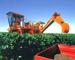 Colhedoras Jacto  Colhedora K-3 4x4 - Desenvolvida a partir da realidade da cafeicultura brasileira com a participação direta do nosso produtor rural, a Colhedora K-3 Challenger 4x4 é uma máquina perfeitamente adaptada às mais diversas condições da lavoura nacional