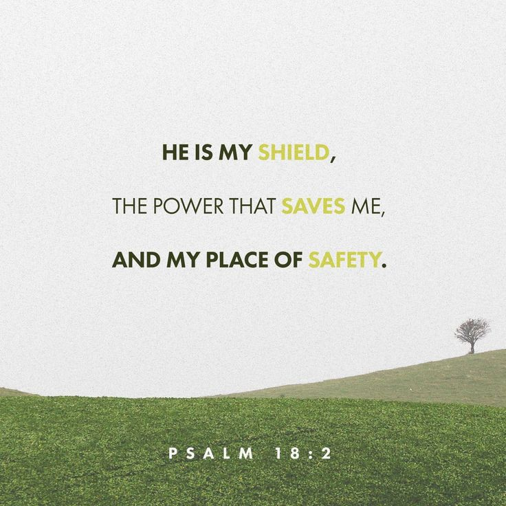 The Lord is my rock and my fortress and my deliverer; My God, my strength, in whom I will trust; My shield and the horn of my salvation, my stronghold. Psalms 18:2 NKJV