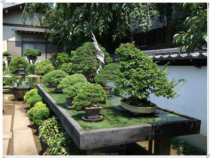 250 besten asia bilder auf pinterest landschaftsbau. Black Bedroom Furniture Sets. Home Design Ideas