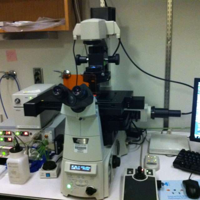 Nikon inverted microscope with de-convolution module....exciting!