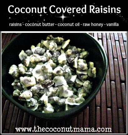 "Coconut Covered Raisins: A Dairy Free ""Yogurt"" Covered Raisin"