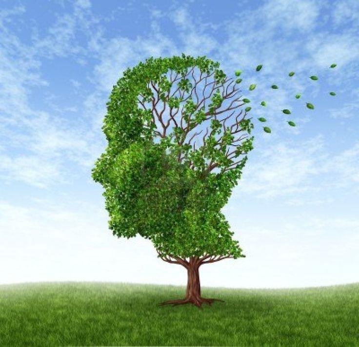 La vitamina E può rallentare il declino mentale e funzionale in pazienti con diagnosi di malattia di Alzheimer. Uno studio effettuato da scienziati del Min