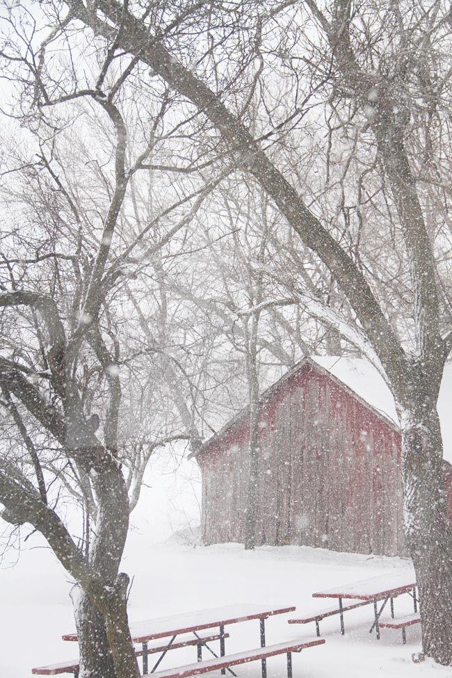 Red barn in snowfall, Kansas