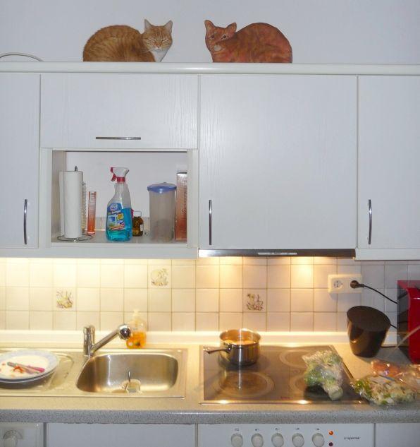 Efficiënt koken voor een vegetariër en vleeseter: met weinig extra moeite maak je gemakkelijk een lekker maaltje voor alle huisgenoten!