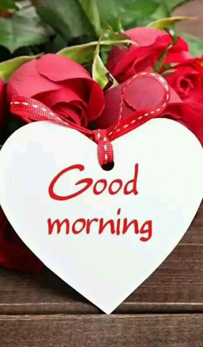 Good Morning Sunday Love : Best good morning sunday images ideas on pinterest